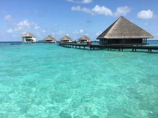 モルディブで水上コテージに泊まり至福の時を過ごしました。