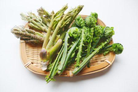 子供の頃おやつがなく、つくしや蕨をとって食べていました。